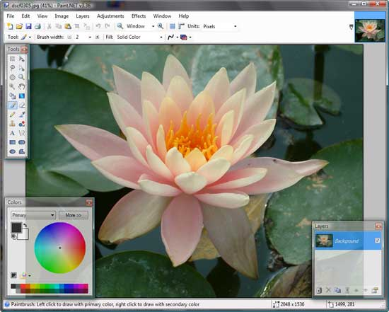 Paint .Net Interface