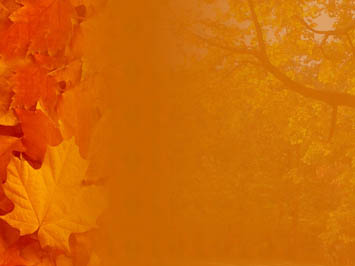 powerpoint templates and themes  fall / autumn, Powerpoint