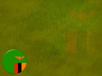 Zambia Flag PowerPoint Template