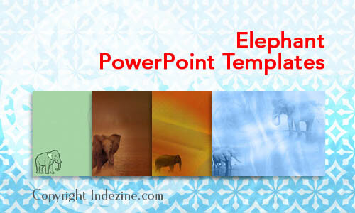 Elephant PowerPoint Templates