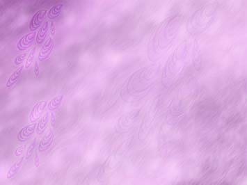 Purple Feather PowerPoint Templates