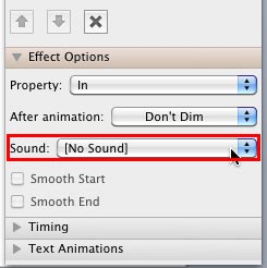 Sound option within Effect Options pane