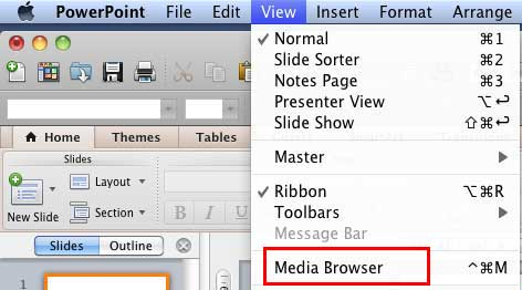 View menu options to enable Media Browser tabs