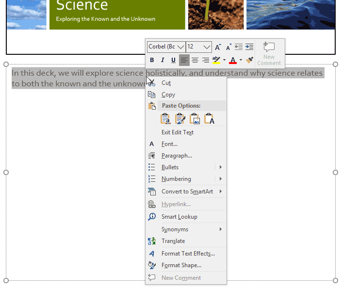 Format your text using the Mini Toolbar