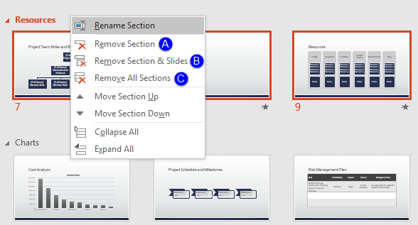 Options to remove the selected Section