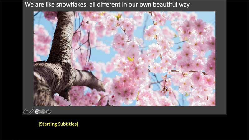 Subtitles show up automatically