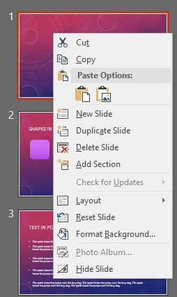 Right-click contextual menu for the slide within Slides Pane