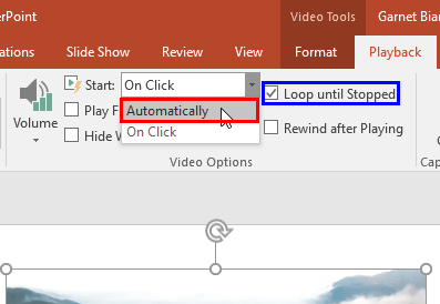 Automatically option and the Loop until Stopped check-box selected