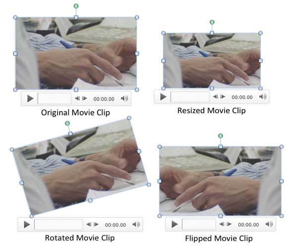 Variants of the same movie clip applied with resize, rotate, and flip options