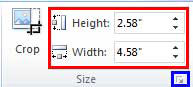 Height and Width values entered within the Size group