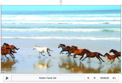 Video Correction Adjustments in PowerPoint 2013