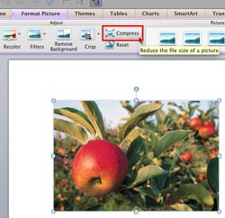 Learn PowerPoint 2011 for Mac: Compress Pictures