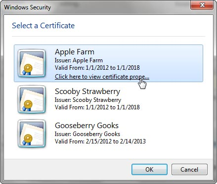 List of certificates within the Windows Security window