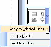 Apply to Selected Slides option
