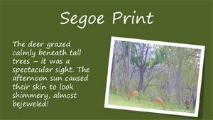 Segoe Print